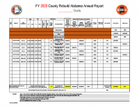01 FY2020 Annual Report Template (PDF)