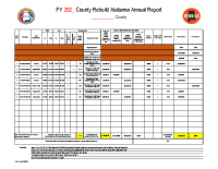 11pdf-Annual Report Template revised 08.19.21
